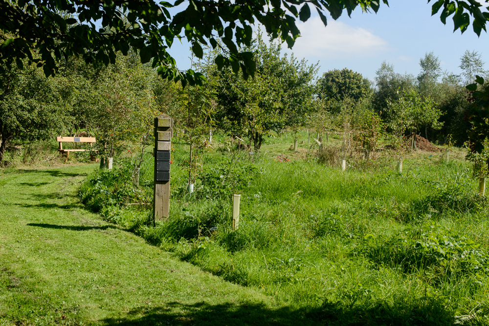 Prestwold Natural Burial Ground